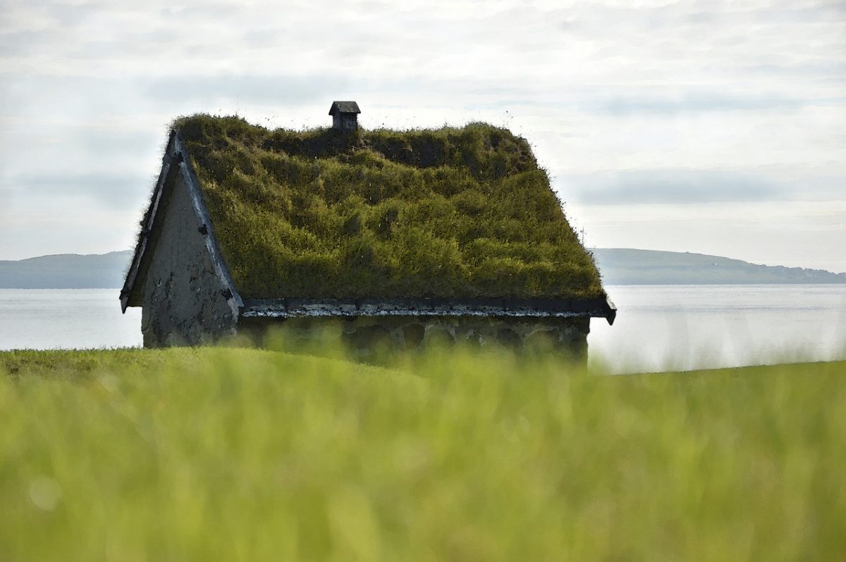 Green Roofing: Is It Always A Good Idea?